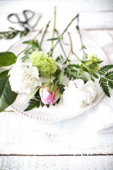 saturday blooms (1 of 1)