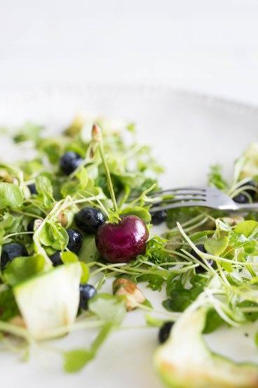 cherry salad2 (1 of 1)