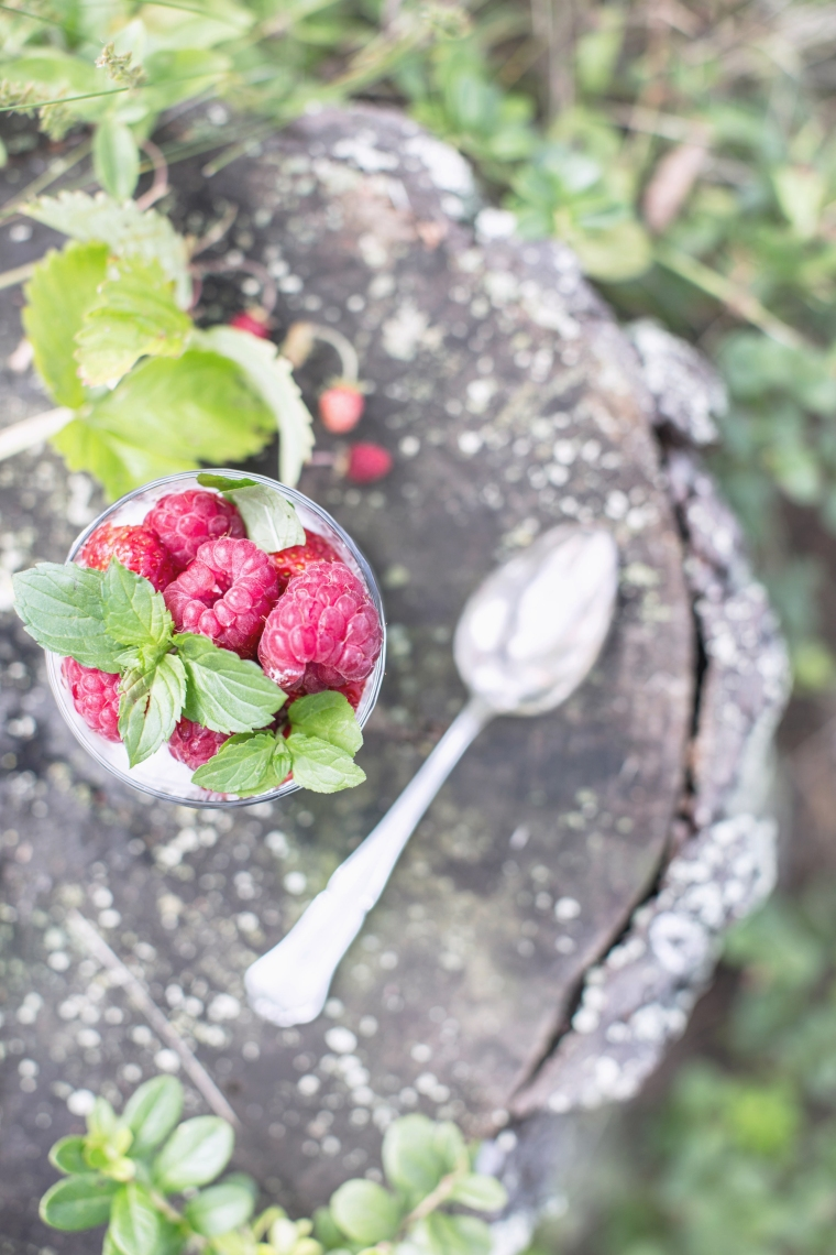raspberry (1 of 1) kopio