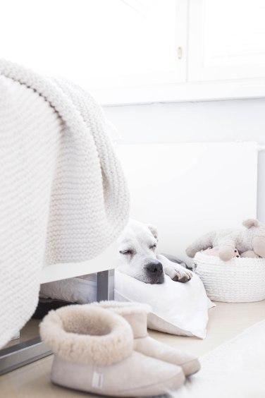 bella bedroom (1 of 1)