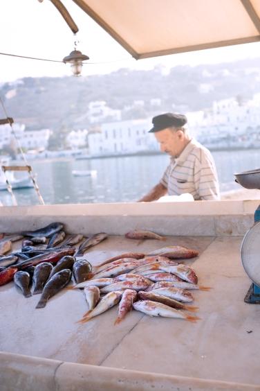 mykonos-morning-fish-market-1-of-1