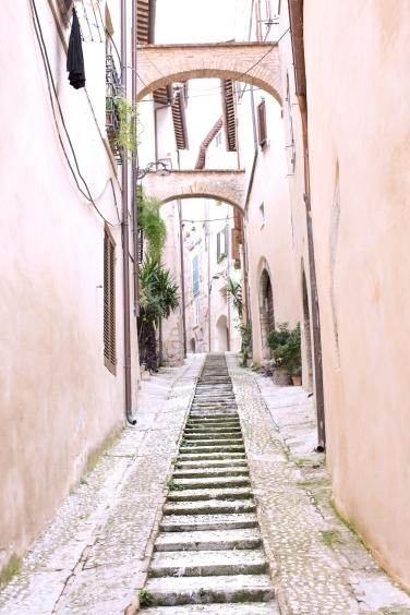 trevi narrow street (1 of 1) copy