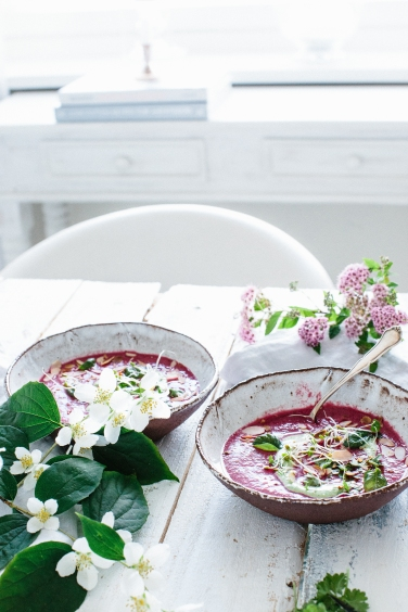 chilled beetroot soup6 (1 of 1)